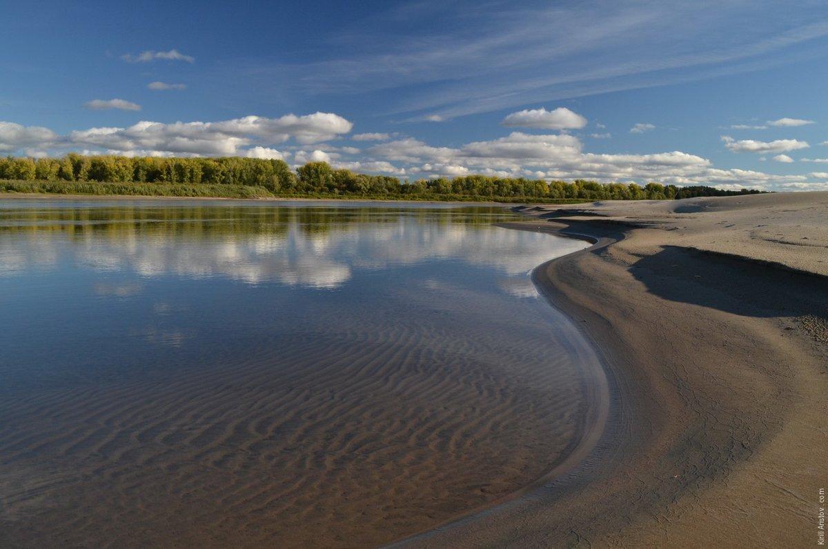 если фотографии реки обь шишки представляют собой