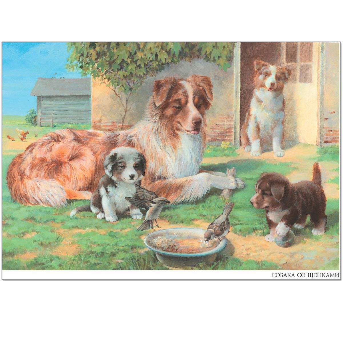 Картинка собака с щенком для детей