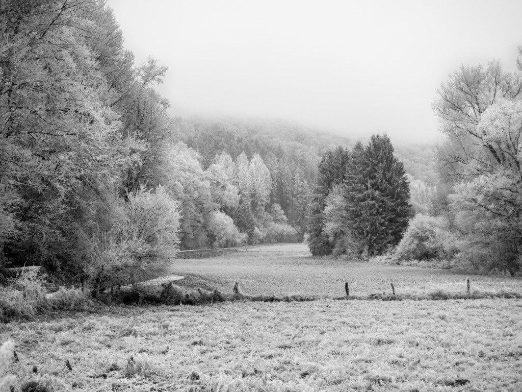 талантливые красивые черно белые пейзажи картинки красотой