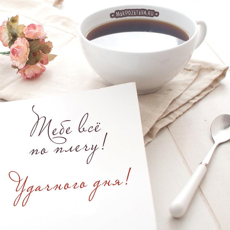 Надписями про, открытка хорошего дня милый
