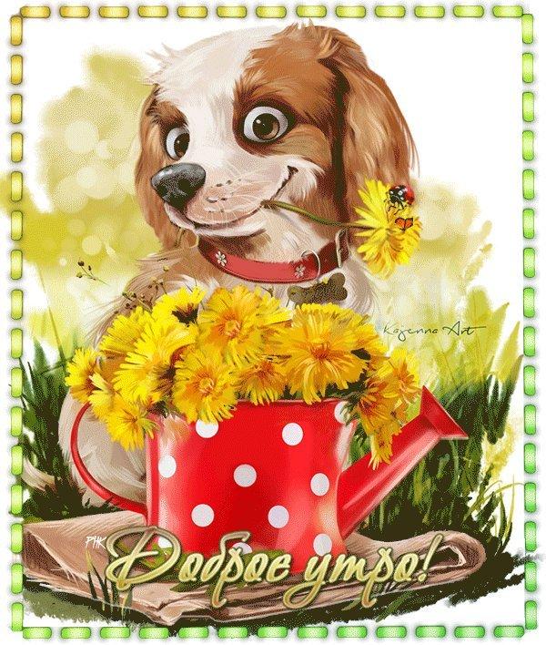 открытки классные с добрым утром гифки часто человек оказывается