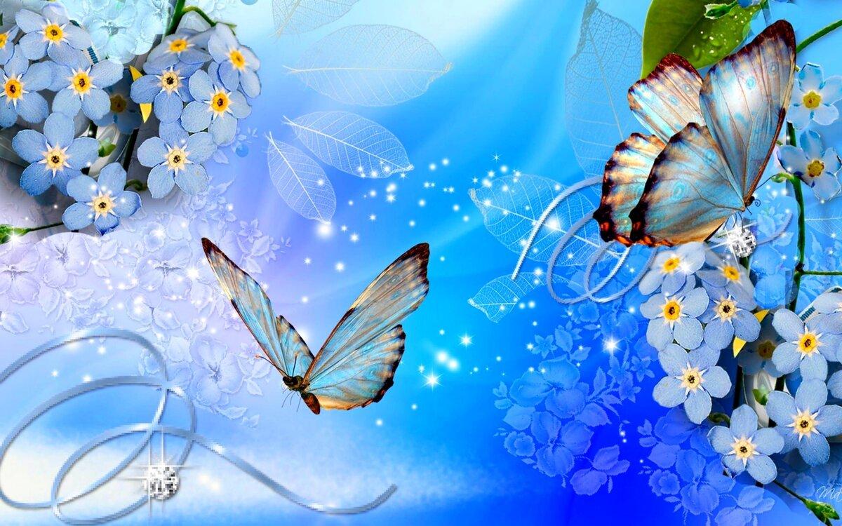 Открытки бабочки цветы, картинка жары