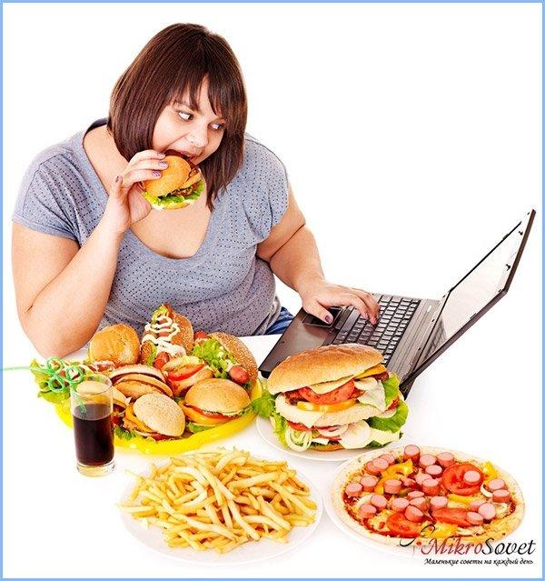 жирная пища для похудения