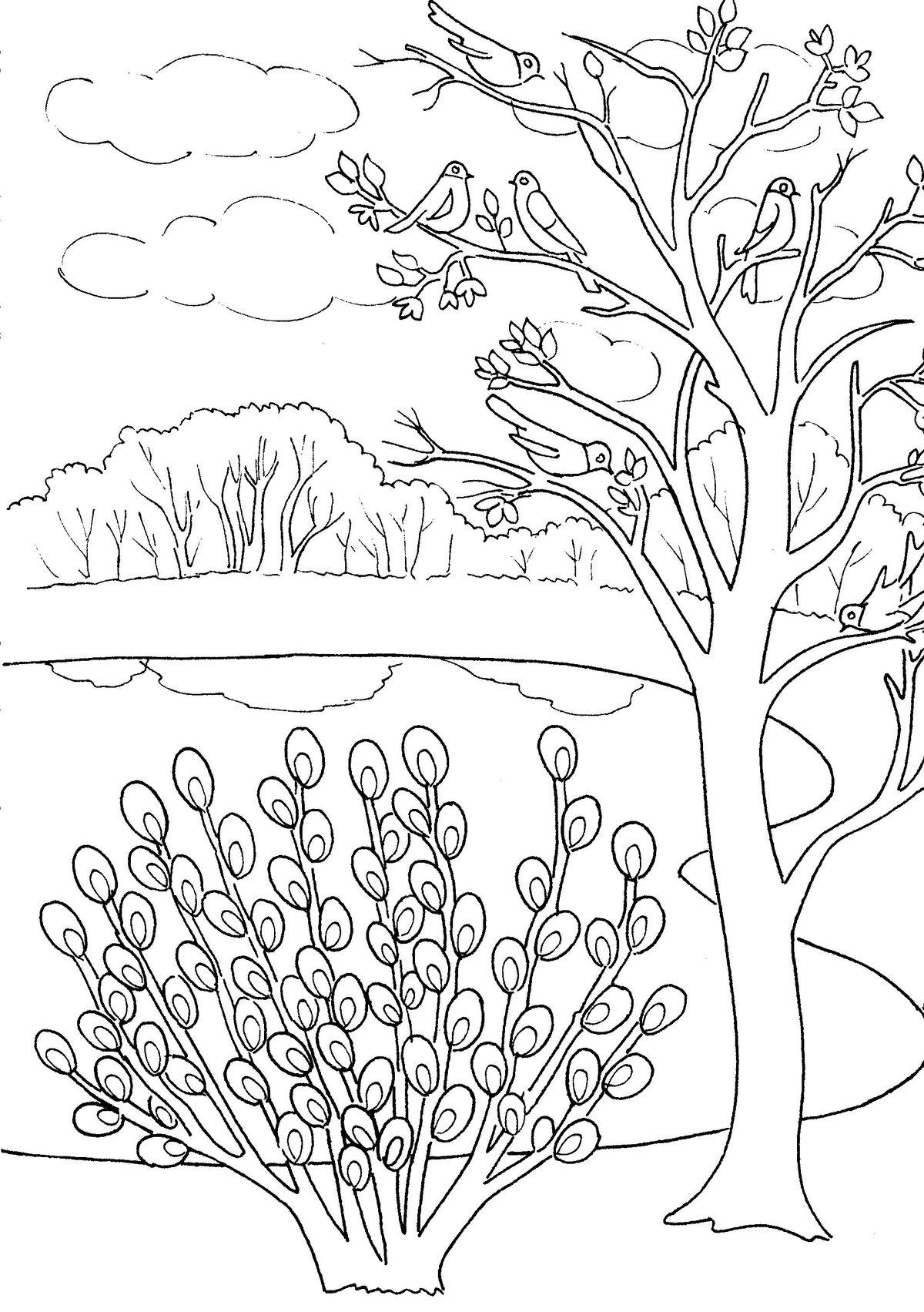 Картинки природы весны для срисовки, днем рождения открытка