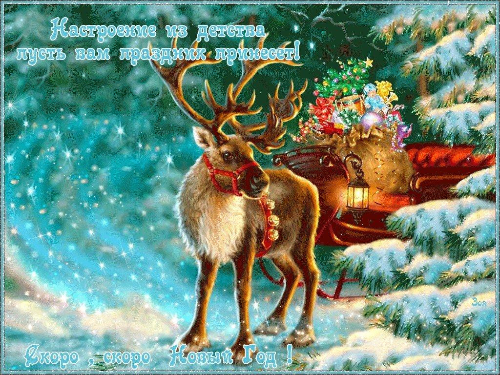 Очках прикольные, новогодние открытки плейкаст