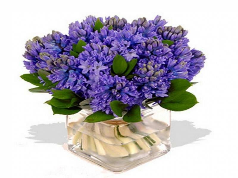 Букет цветов для мужчины открытка, летием совместной