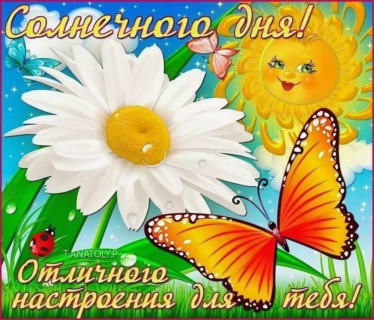 Красивая открытка солнечная