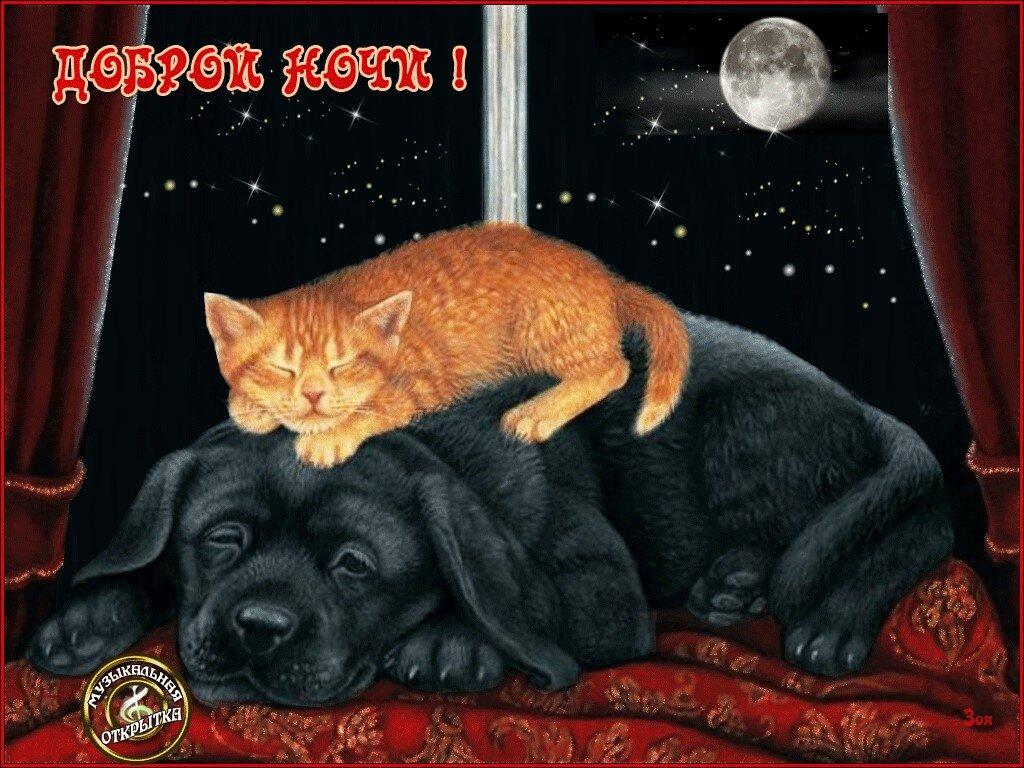 Поздравительные открытки с доброй ночи