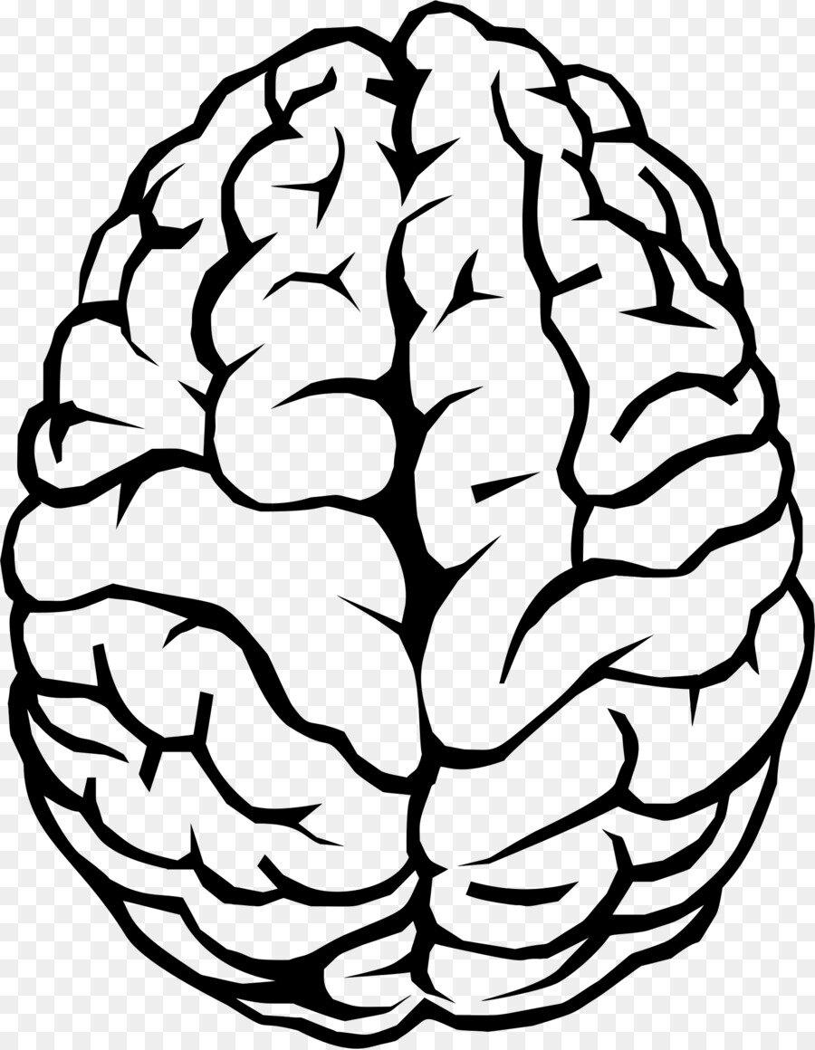 Год, картинка легкие с надписью мозги