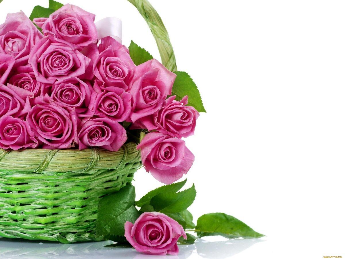 Картинки цветы к поздравления, малышу