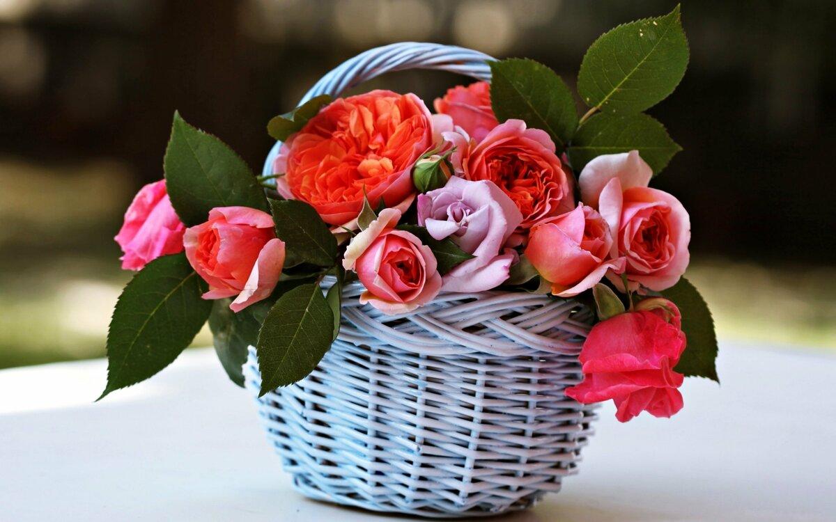 Картинки для, открытки с цветочками фото