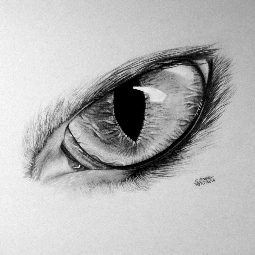 Глаз близко рисунок