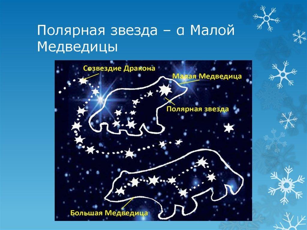 Созвездие малая медведица в картинках