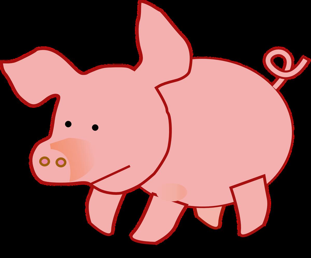Юбилею женщине, свинья картинки нарисованные