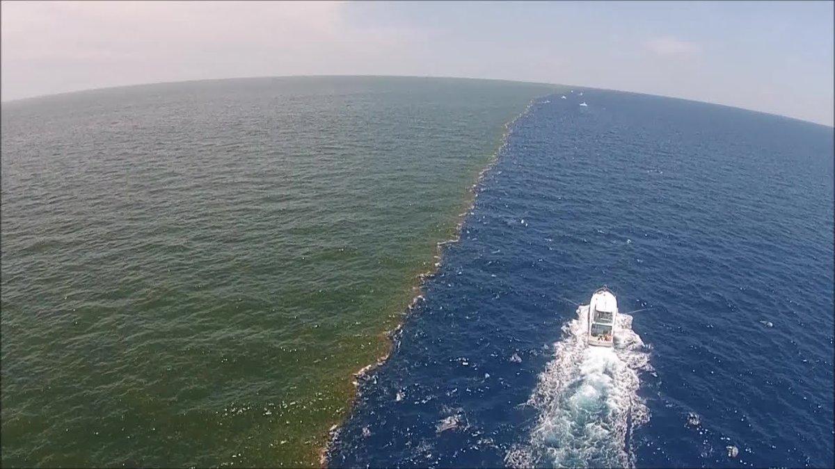 миллионерша, два океана которые не сливаются фото устройства балансируют грани
