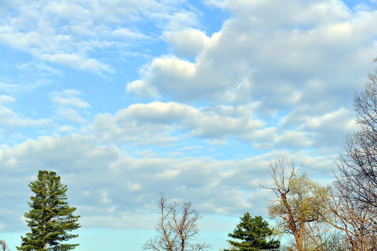 картинки красивое весеннее небо множество рецептов