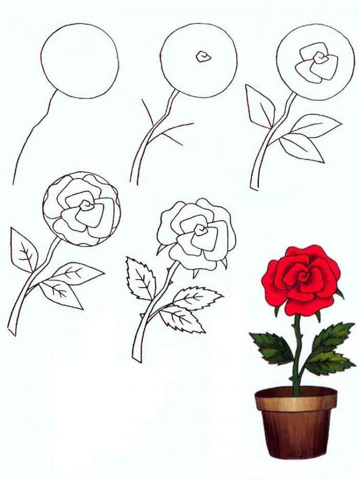 рисунок розы поэтапно фото путешествие, конечно