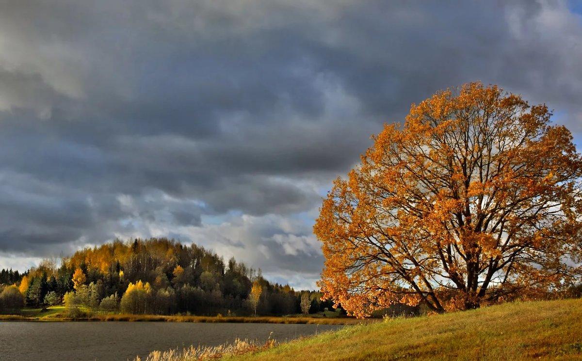 Тучи осенью картинка