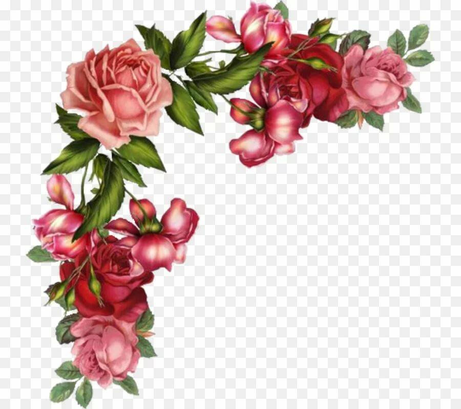 Открытка с цветами в углу, веселые бабки картинки