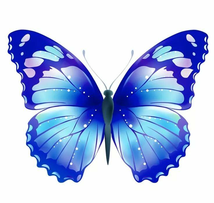 Открытки годовщиной, картинка бабочки гиф