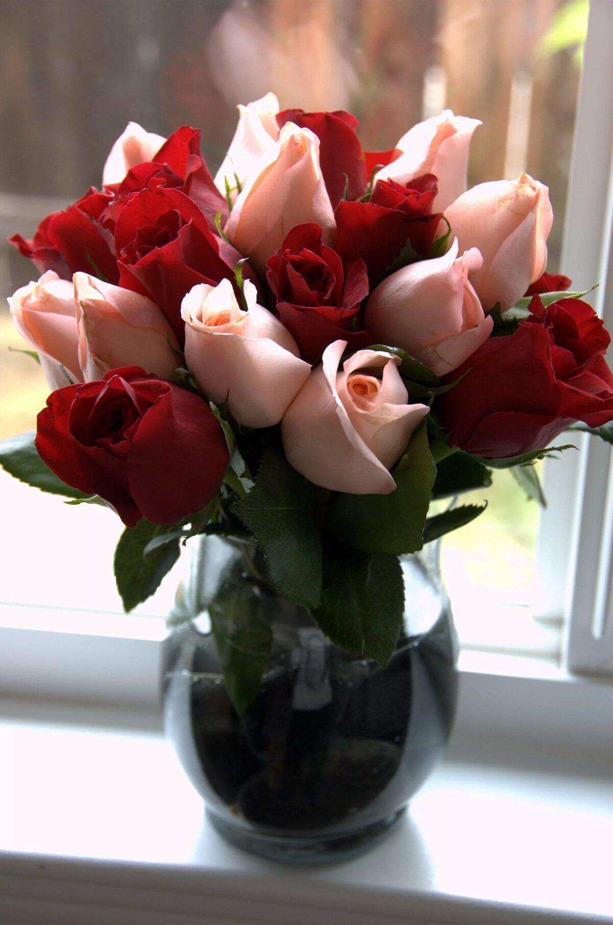могут фото цветов на столе дома подобных мест