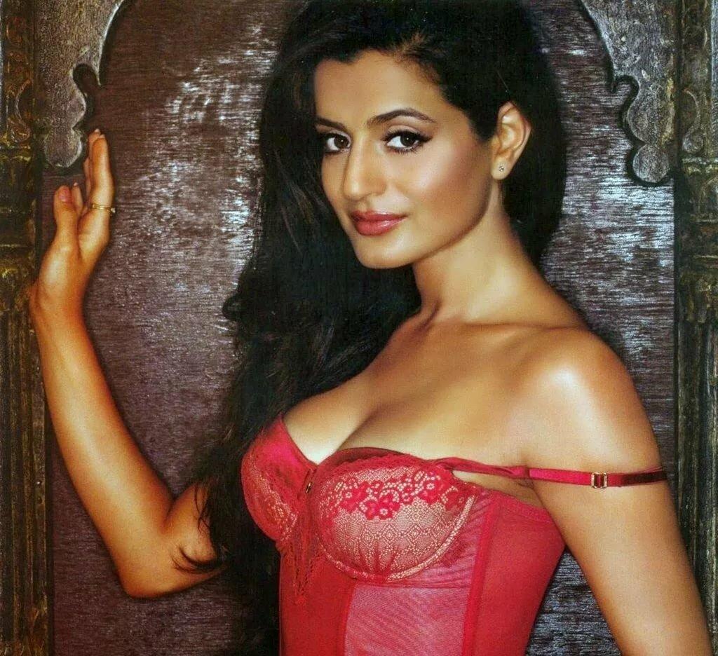 Amisha patel hot sexy naked