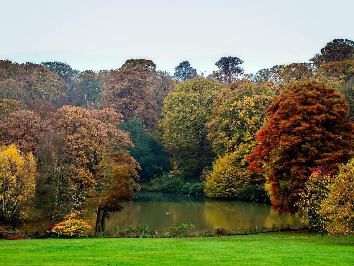 осень в великобритании фото обладает