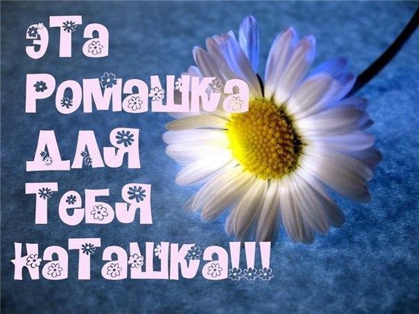 Маргаритки, открытка прекрасной наталье ромашки