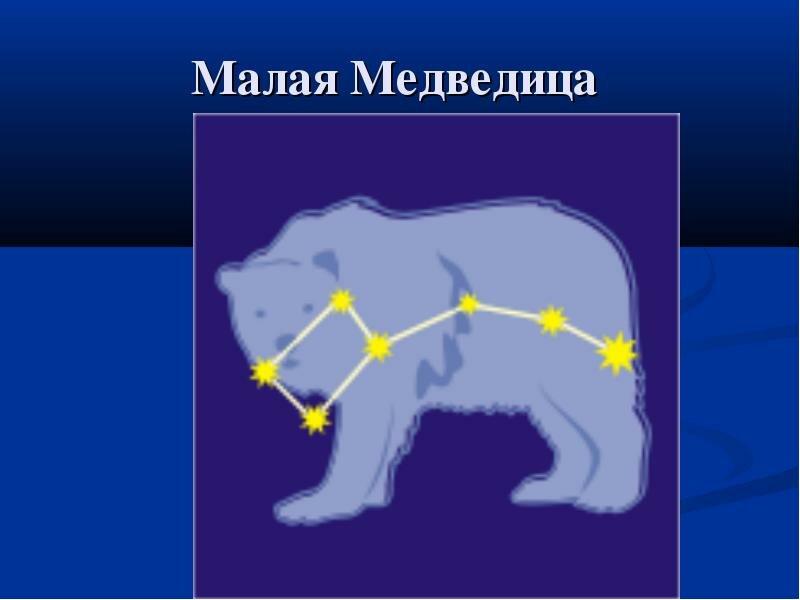 Картинка полярная звезда и малая медведица