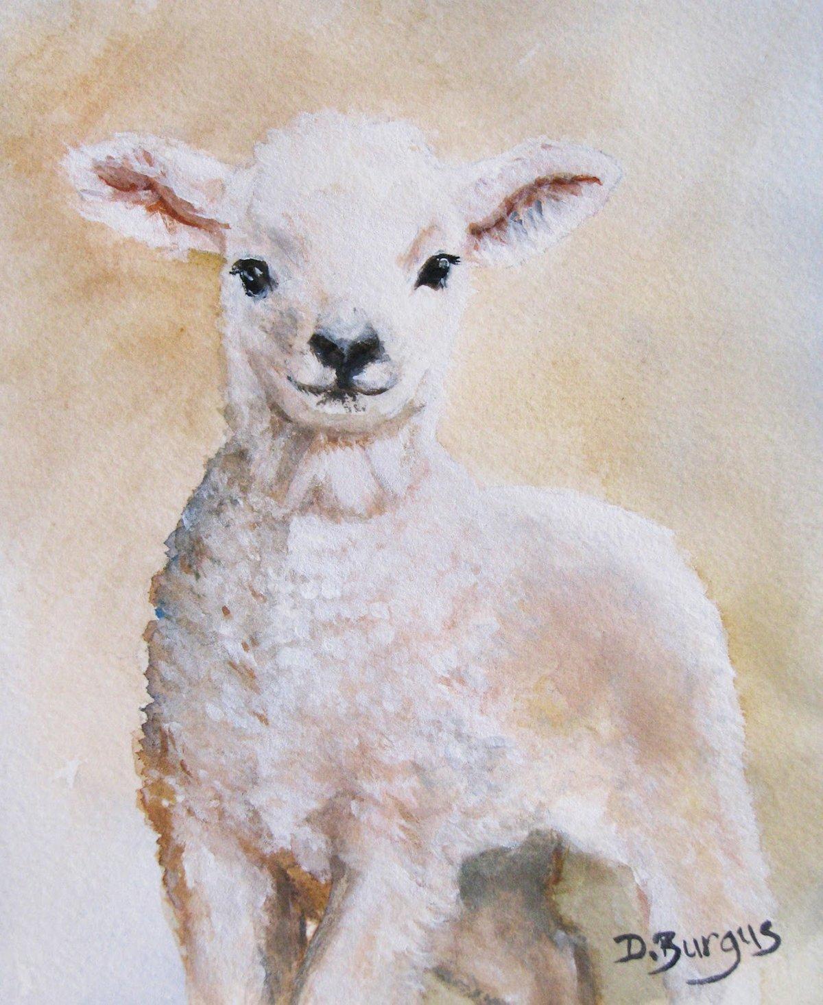 или овцы рисунок красками чтобы рацион