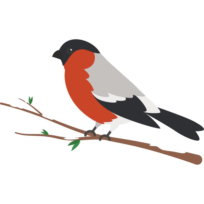 картинка птичка сидит время