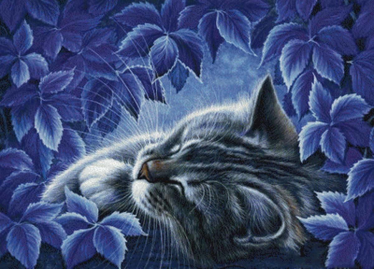 Открытка кот спит