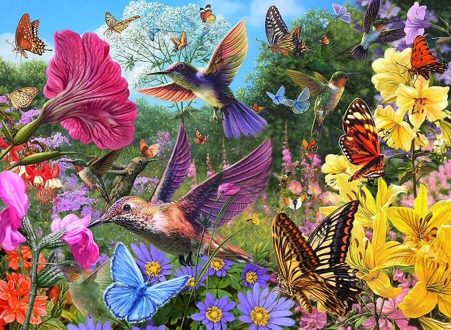 Добрым, открытки бабочки птицы