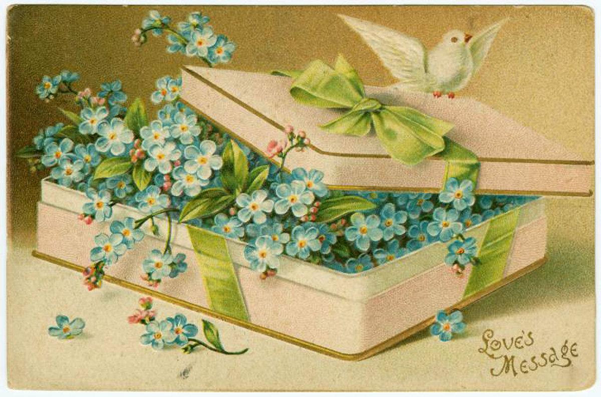 Днем, красивая открытка с незабудками с днем рождения