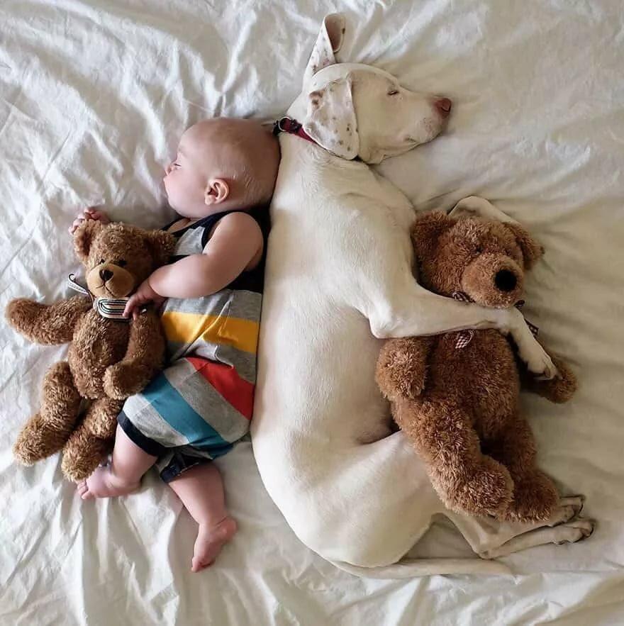 Спокойной ночи картинки с малышами, день