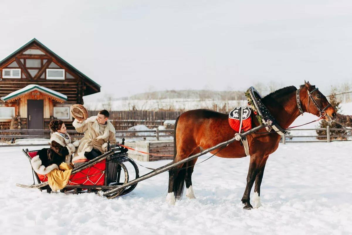 сани с конями картинки человек -существо