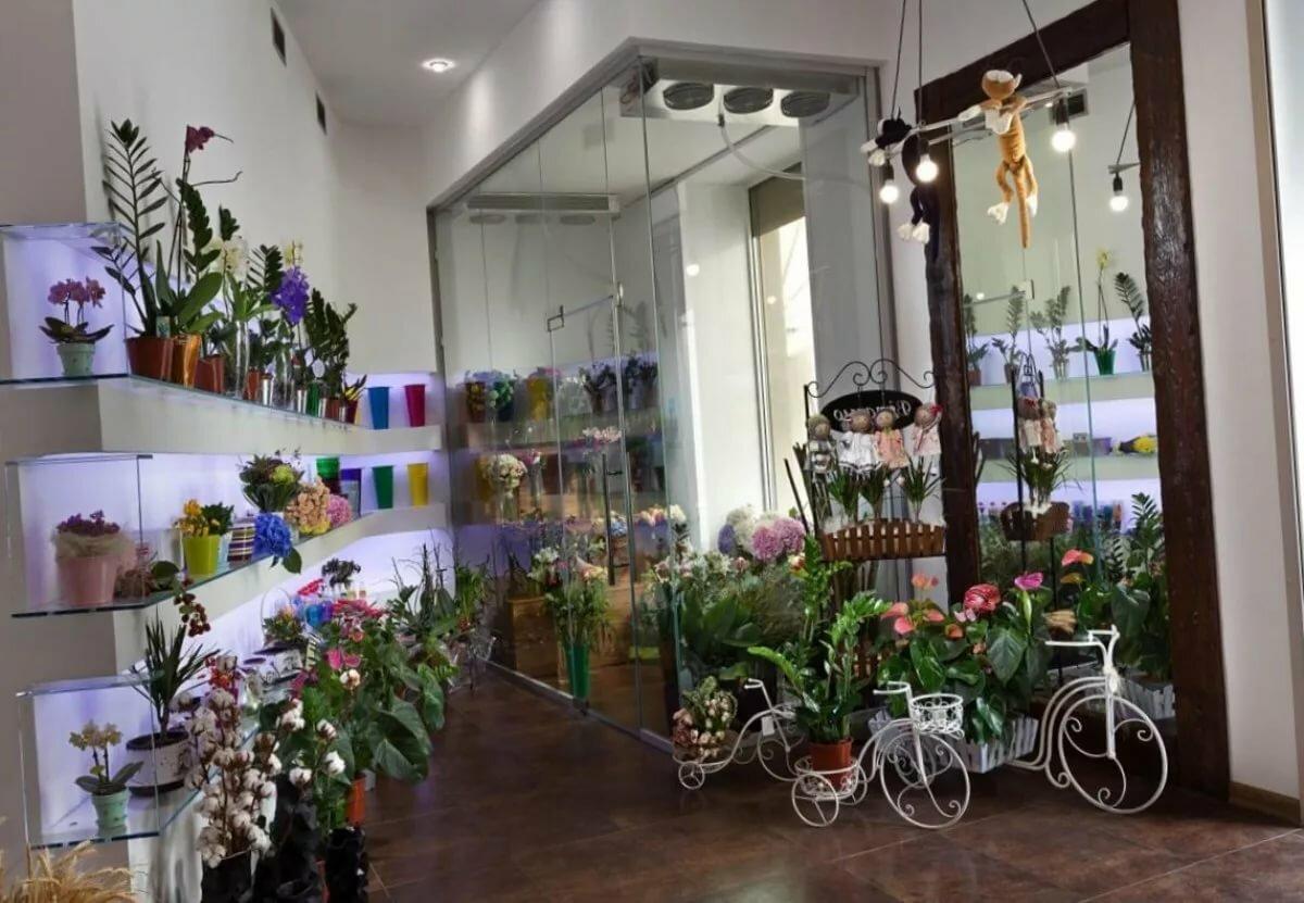 Картинки оборудования для цветов