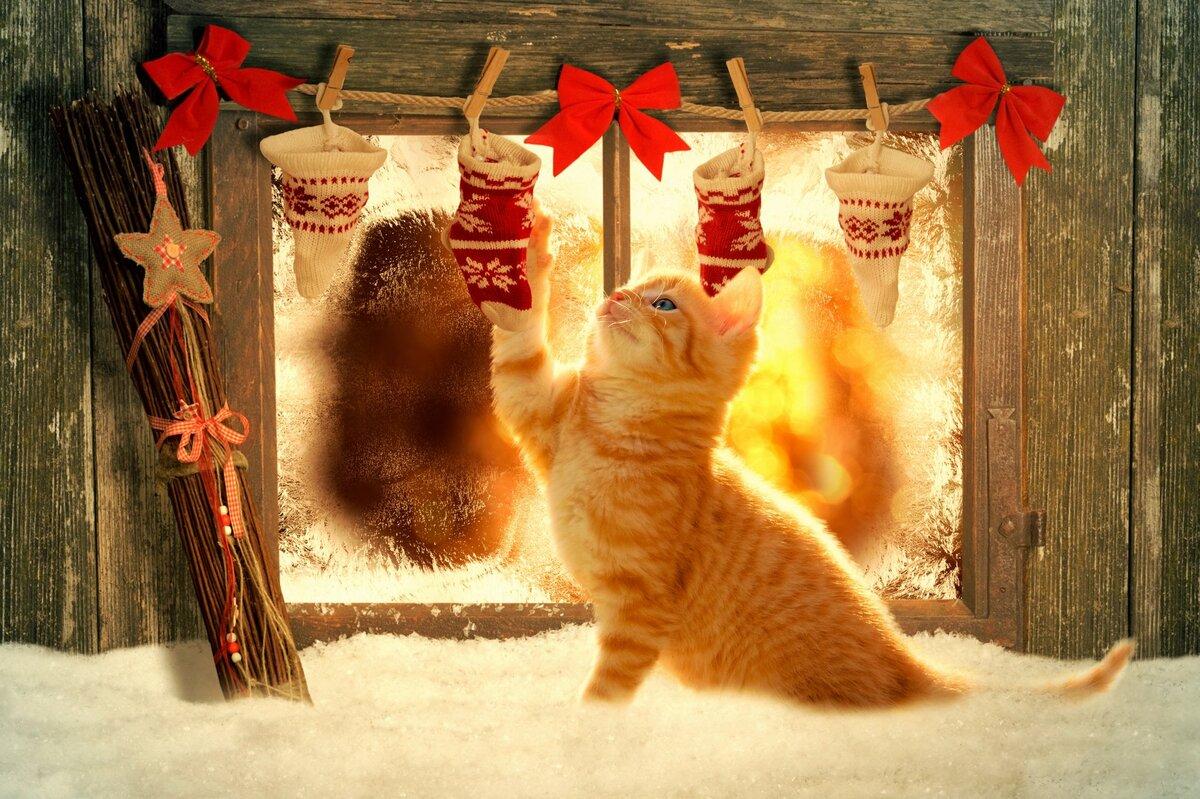 Новогоднее тепло картинка