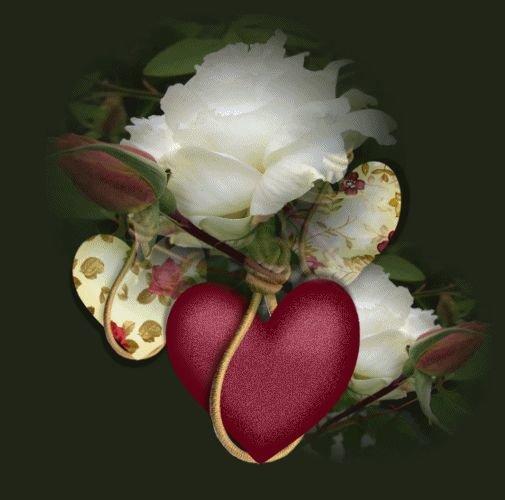 Про, гифы сердце и розы