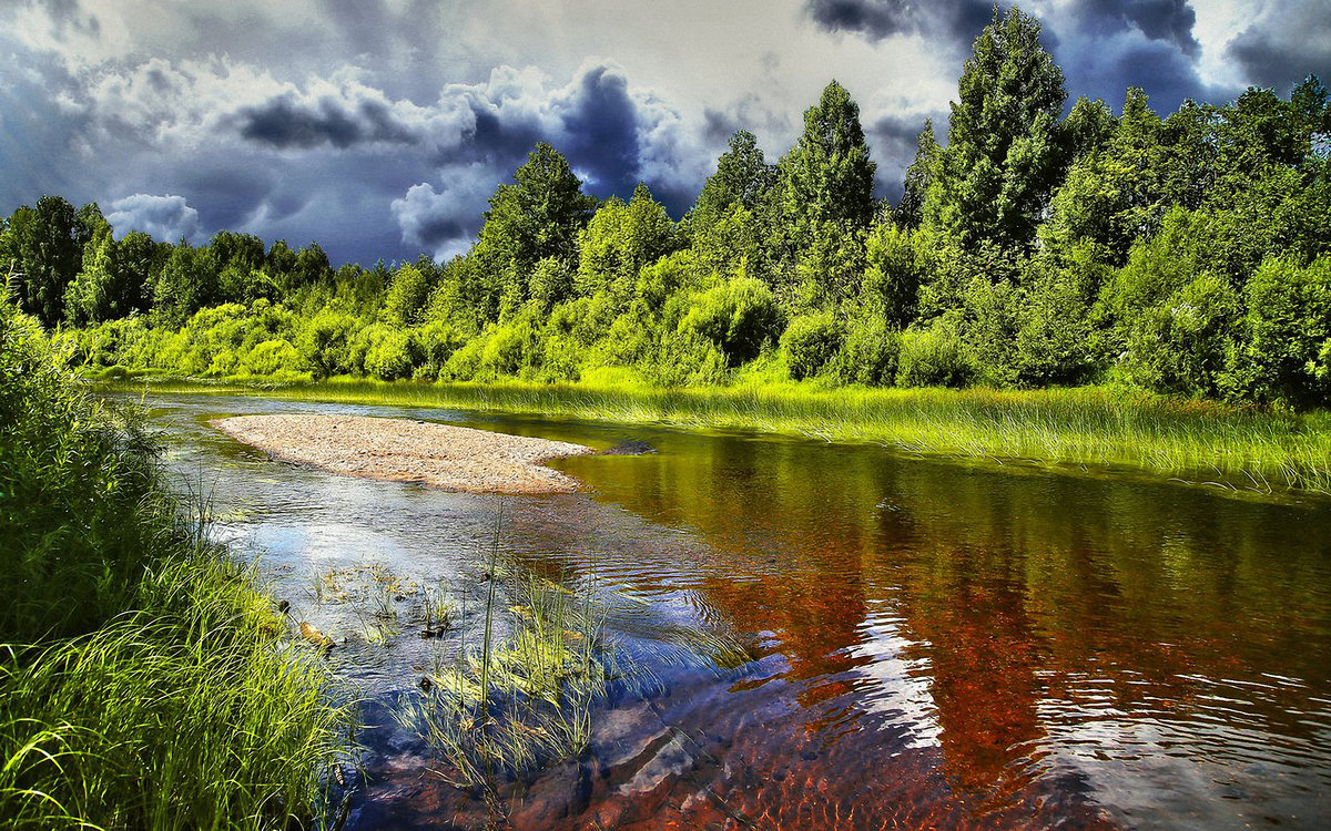 Картинка река летом