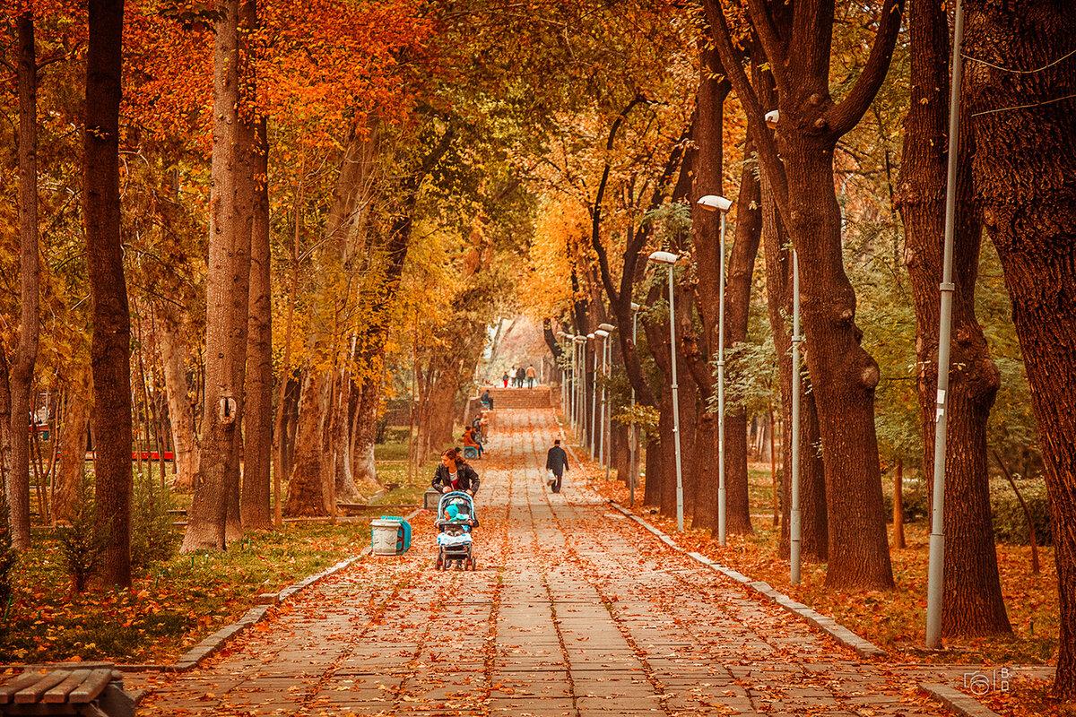 плетение картинки прогулки по осеннему городу ссылкой друзьями, просите