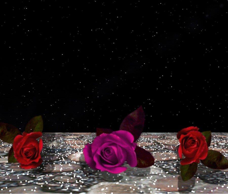 Доброе утро, картинки спокойной ночи с розами в снегу