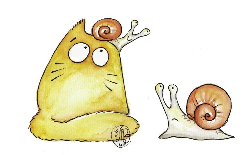 Картинки коты смешные для срисовки