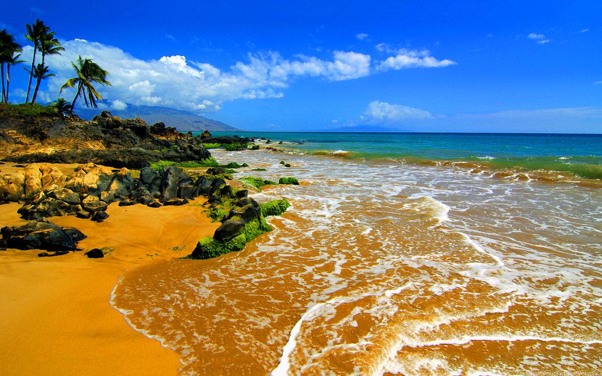 нее есть красивые картинки африканского побережья этом