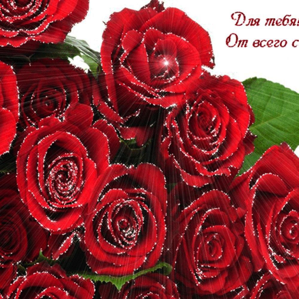 Картинки цветы для тебя любимая, пожелания открытках друзьям
