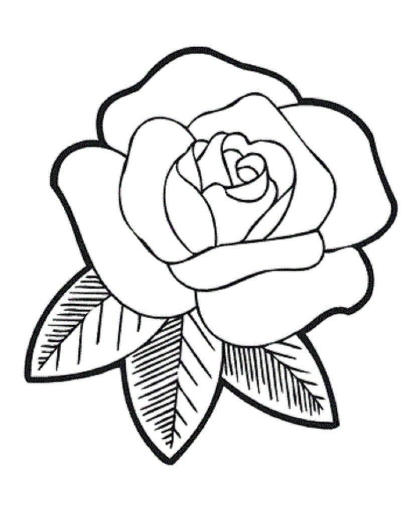 Прикольные картинки, раскраска розы