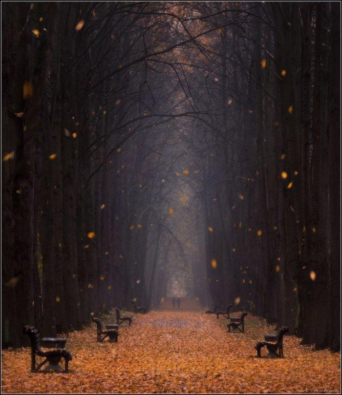 В парке под ногами шуршит опавшая листва, а Ð²Ð¾Ð·Ð´ÑƒÑ Ð¿Ñ€Ð¾Ð¿Ð¸Ñ'ан сыростью.