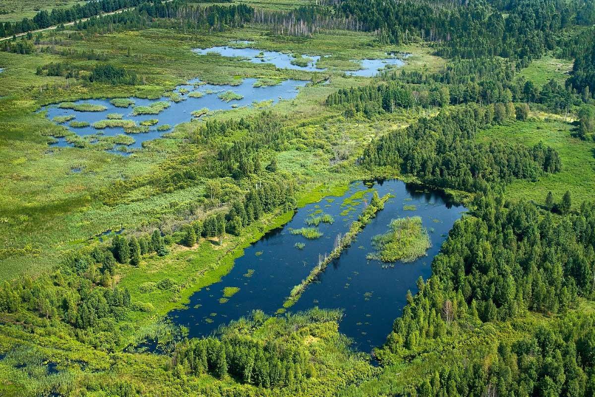 Картинки рек озер болот украины