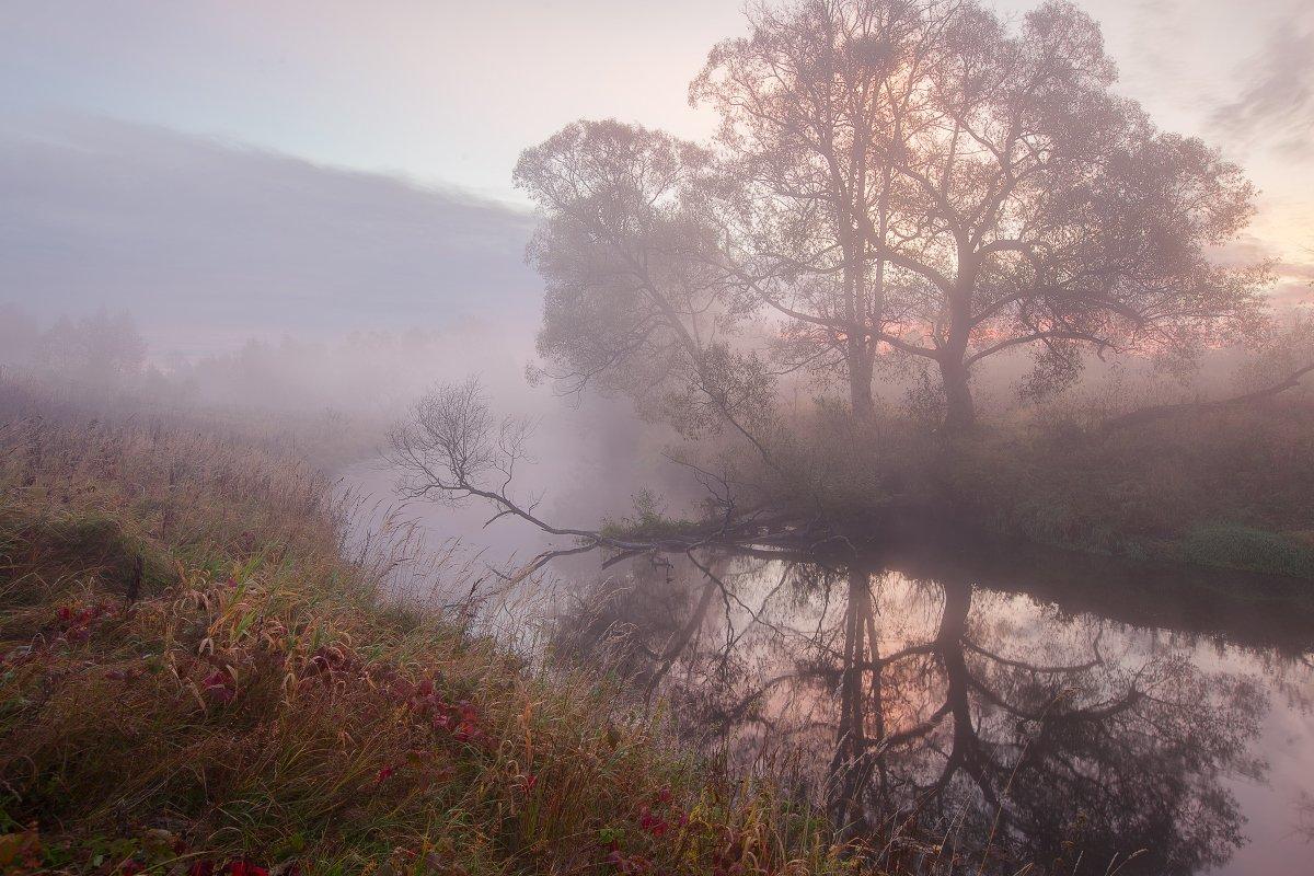 Фото картина туман