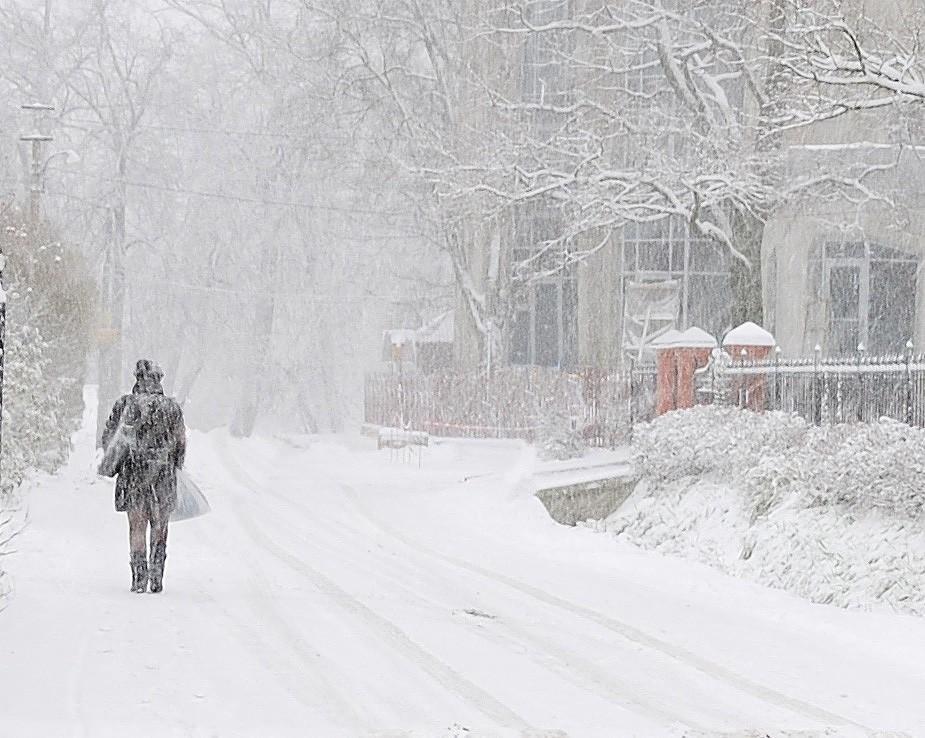снегопад метель фото вариант